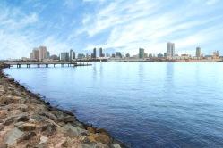 San Diego Landscape 1